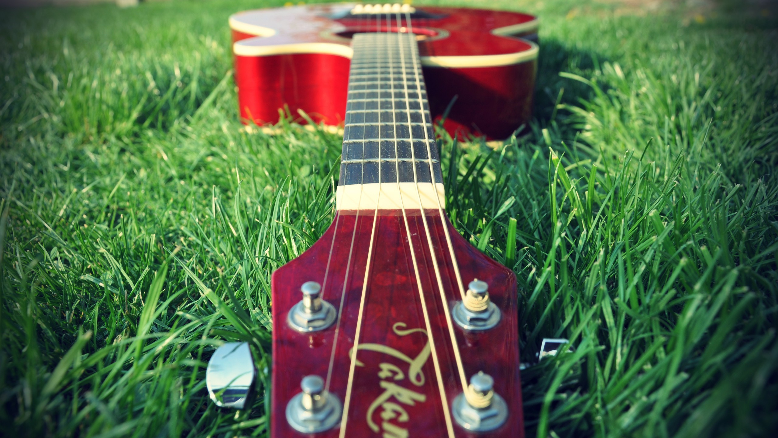 Music grass guitars HD Wallpaper