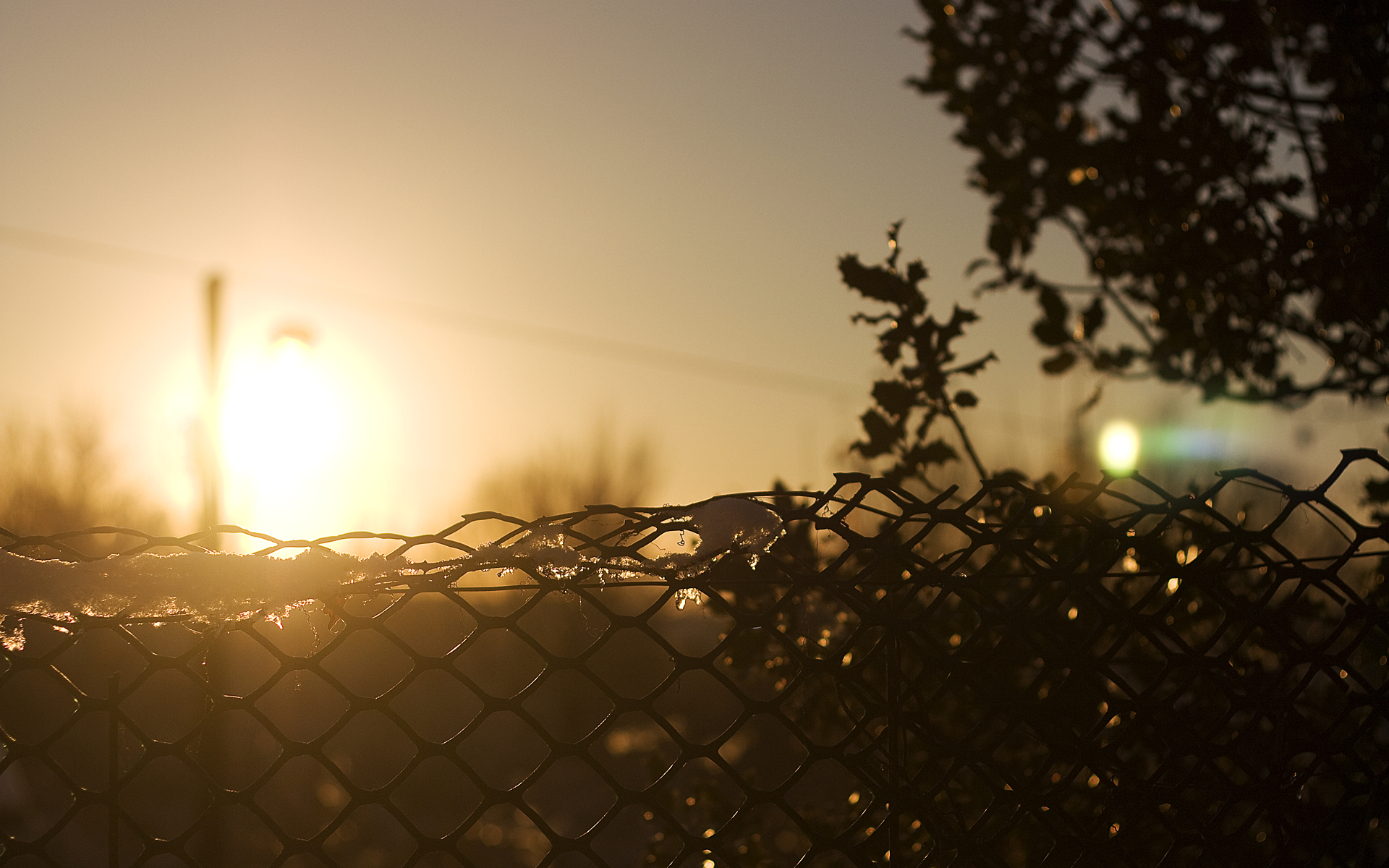 nature fences chain link HD Wallpaper