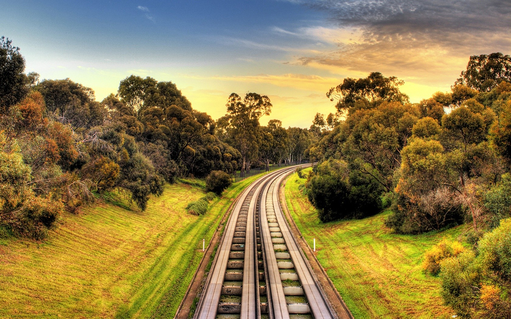 nature forests railroad tracks HD Wallpaper