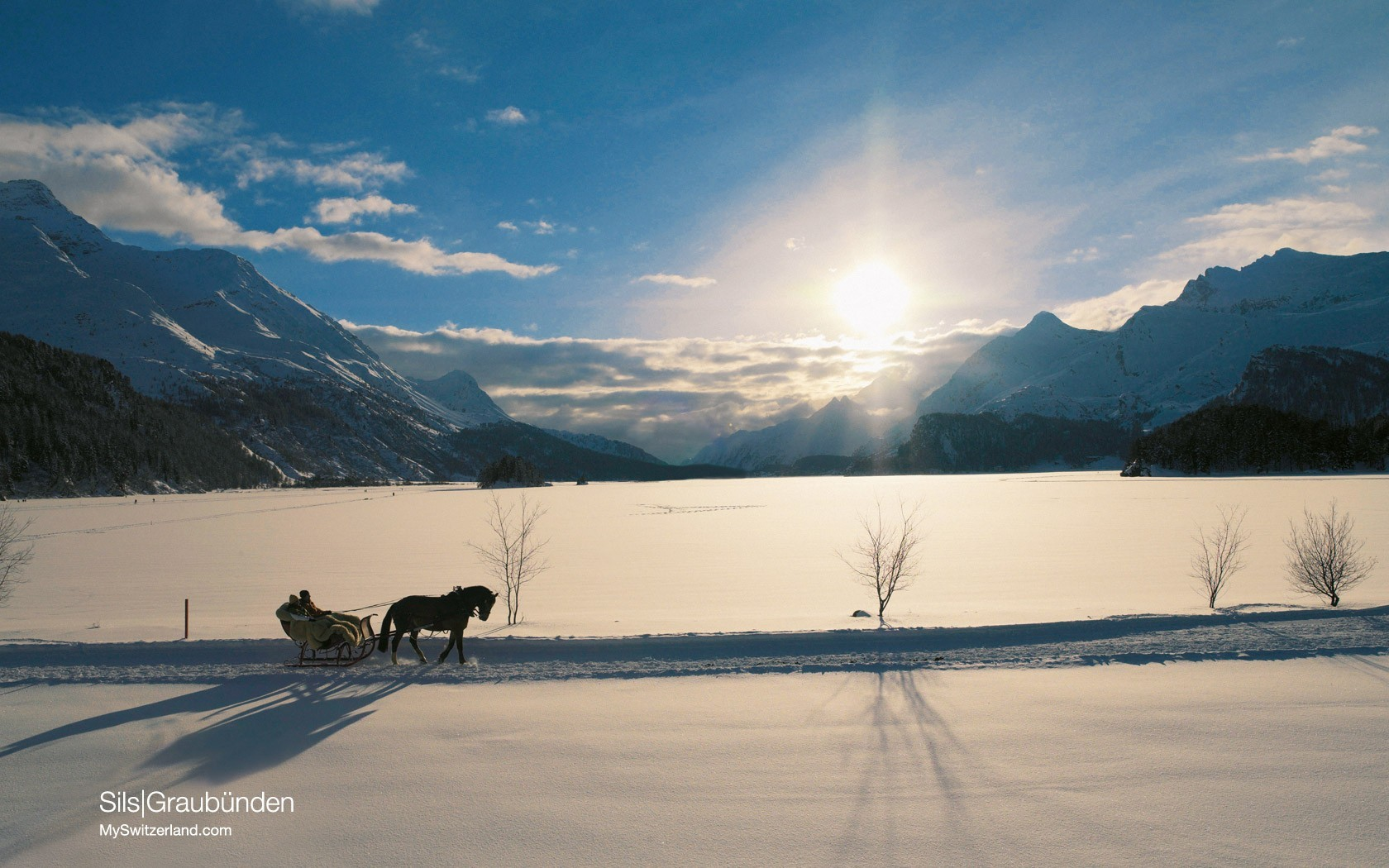 nature snow Mountains Horses skyscapes
