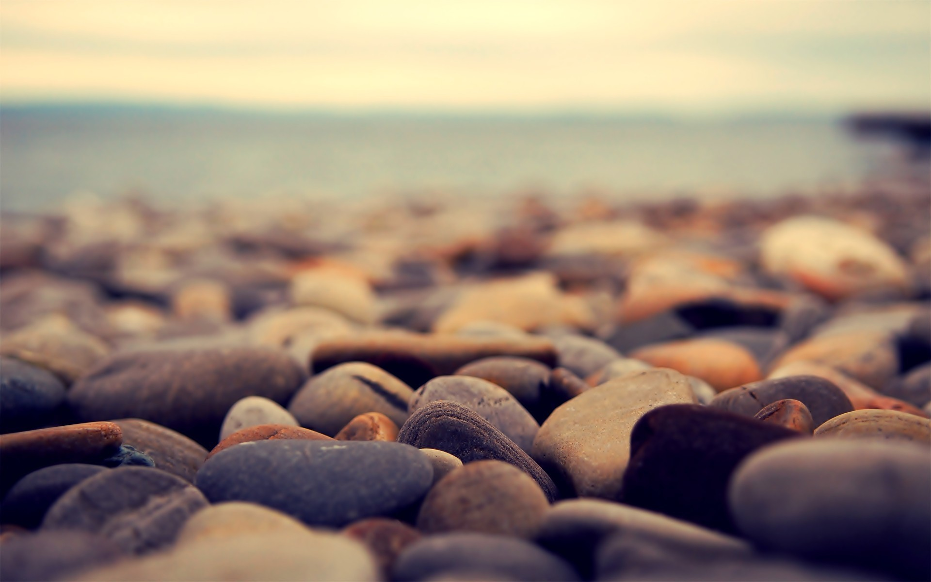nature stones macro depth HD Wallpaper