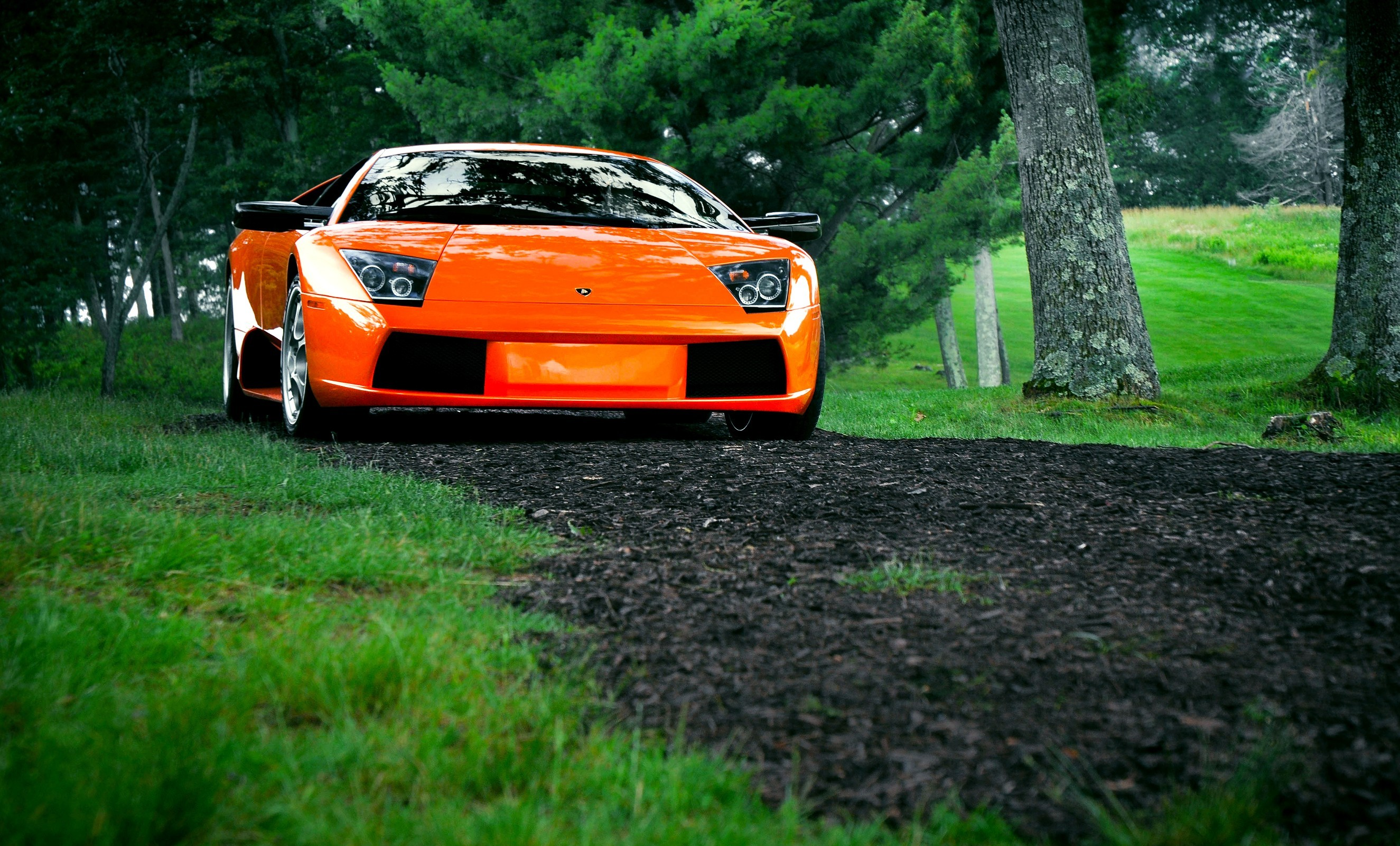 nature Trees cars orange HD Wallpaper