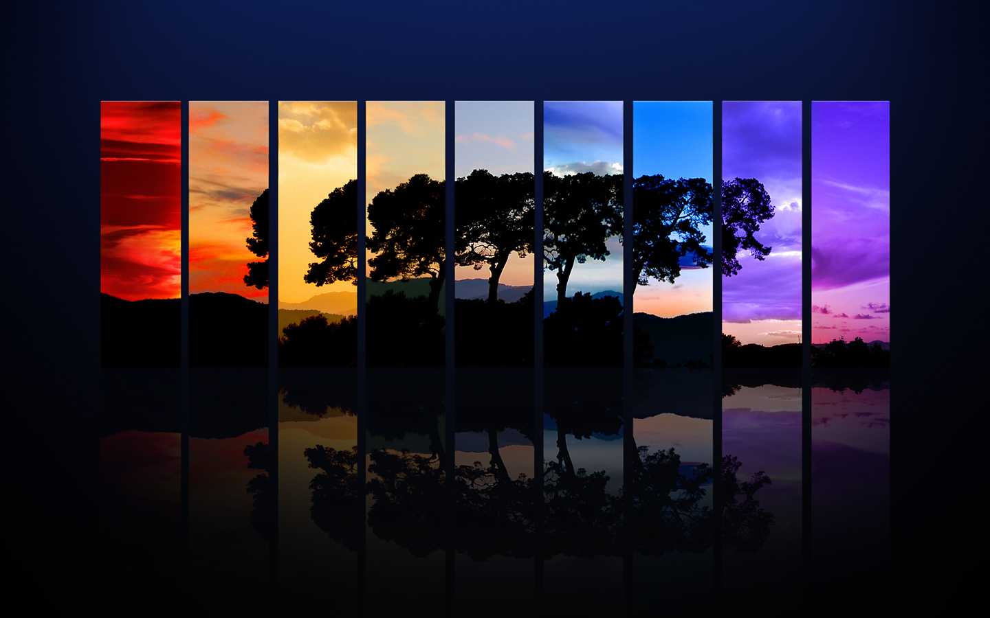 nature Trees colorful spectrum HD Wallpaper