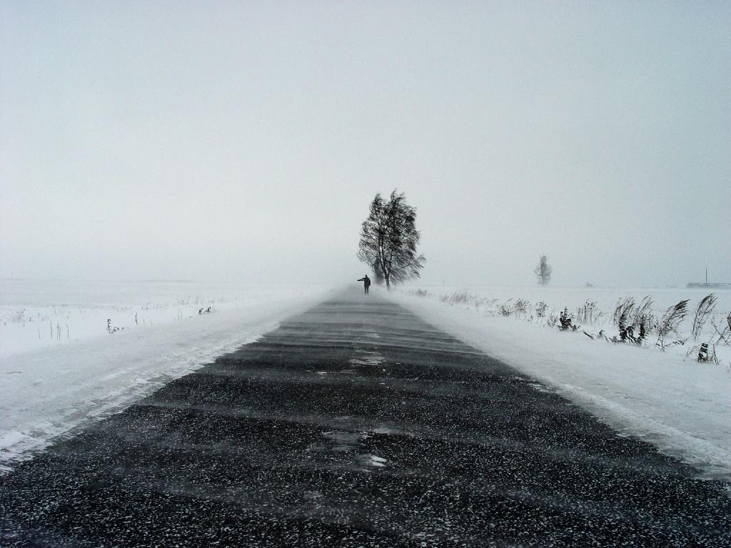 winter trees man road alone wind tree desktop 1024x768 wallpaper