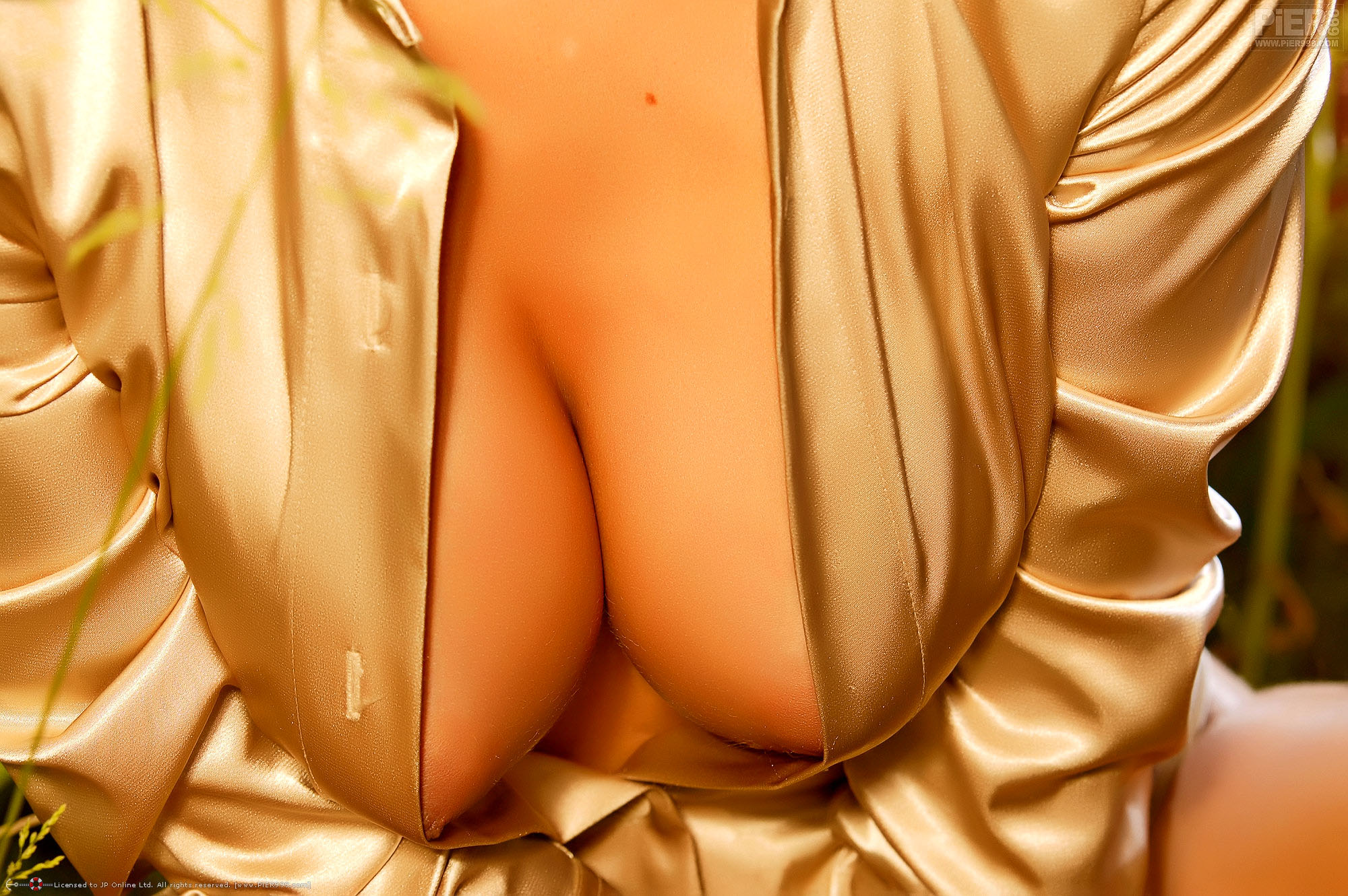 nipples boobs cleavage gold