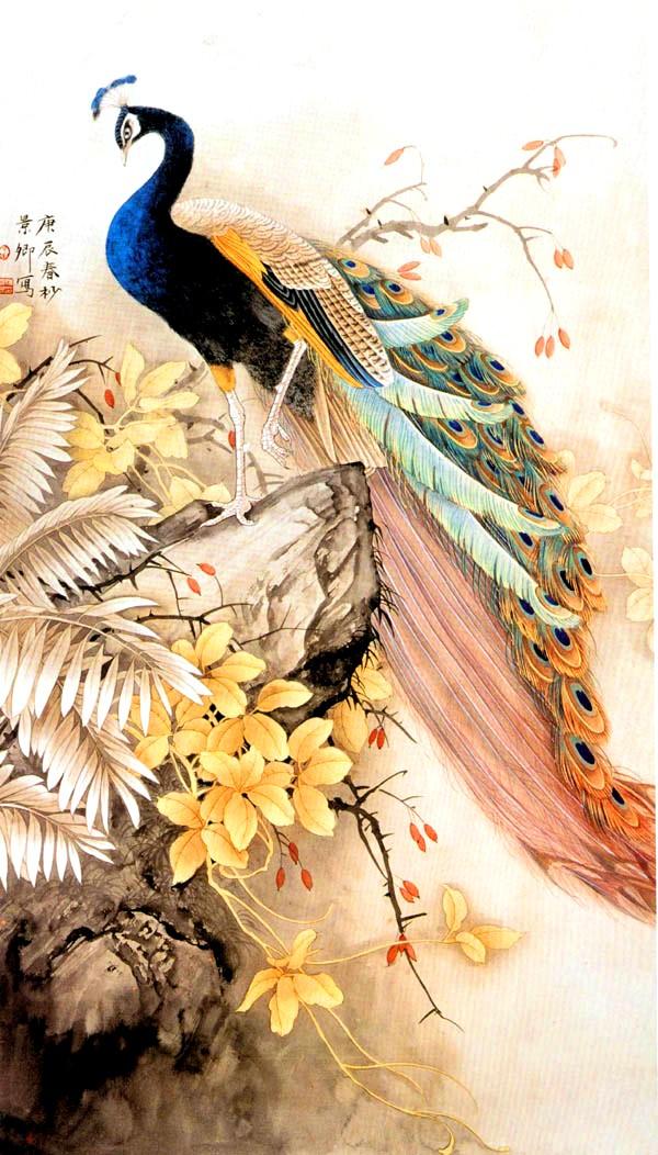Peacock Paintings Wallpaper