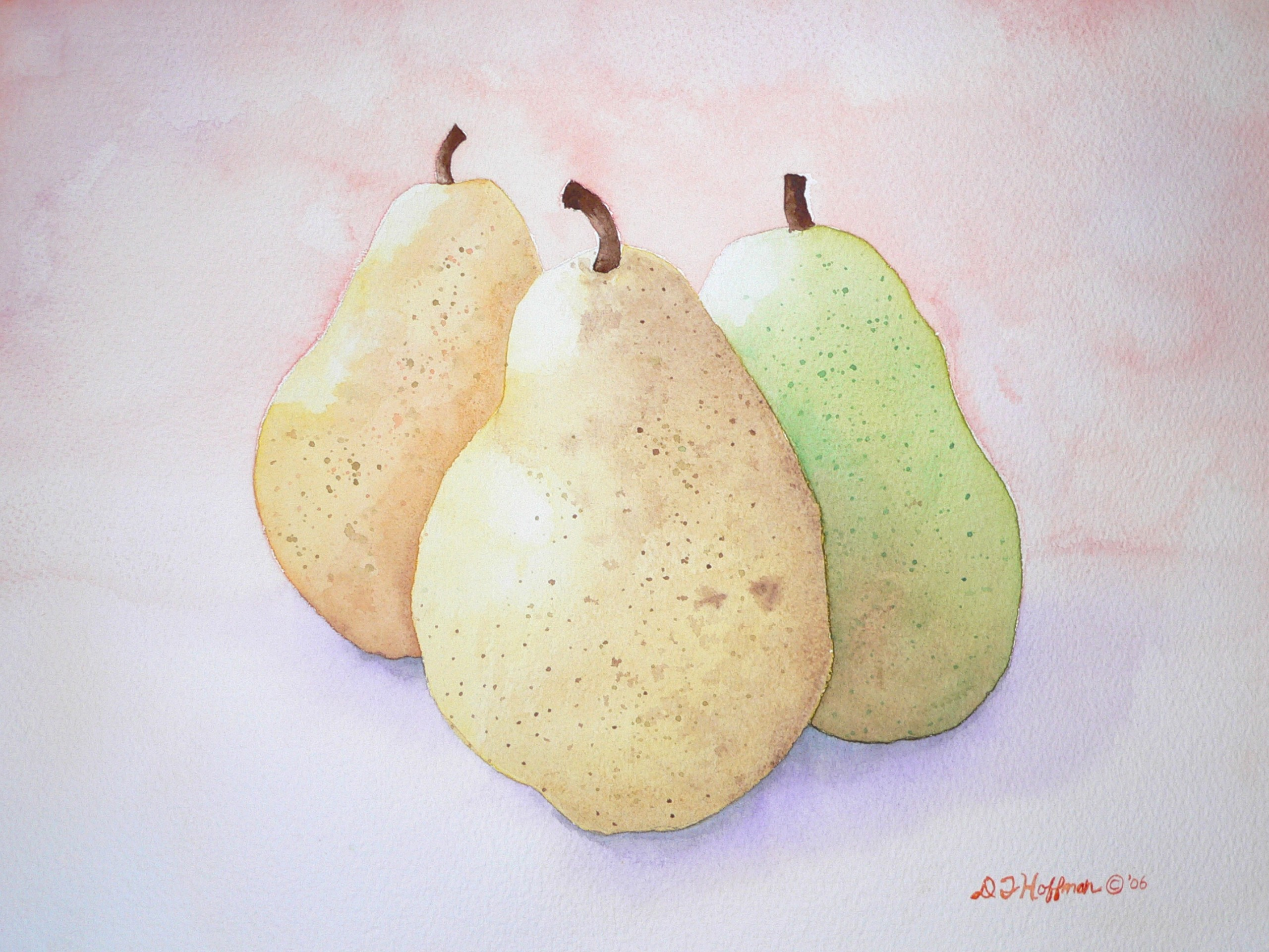 paintings pears still life HD Wallpaper