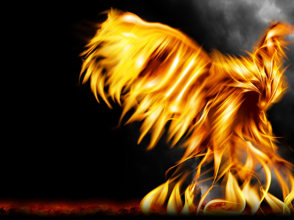 phoenix fire HD Wallpaper