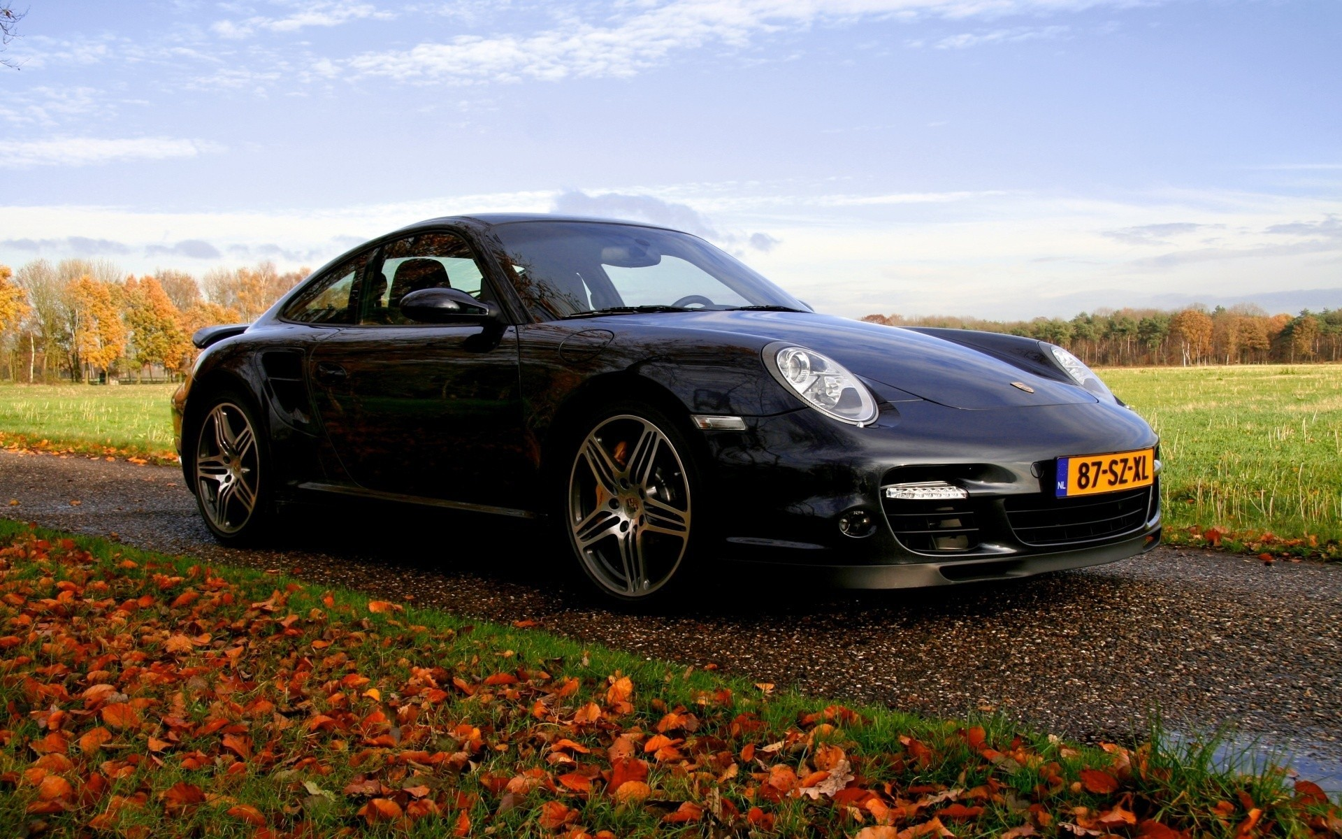 Porsche cars HD Wallpaper
