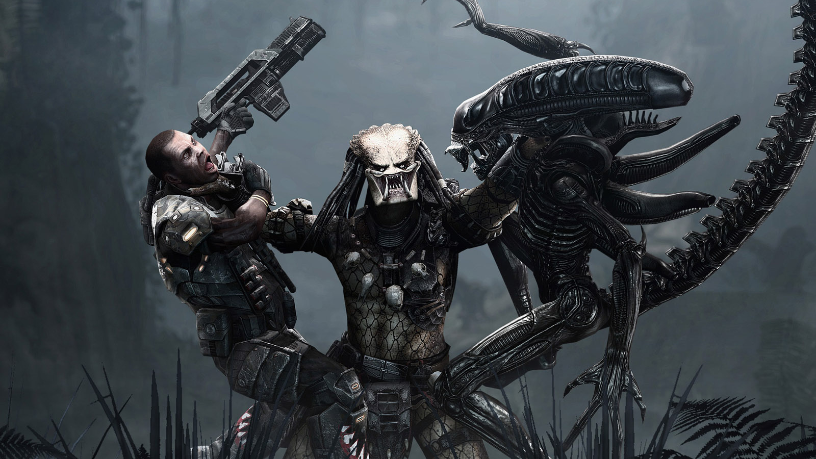 predator Aliens vs game HD Wallpaper