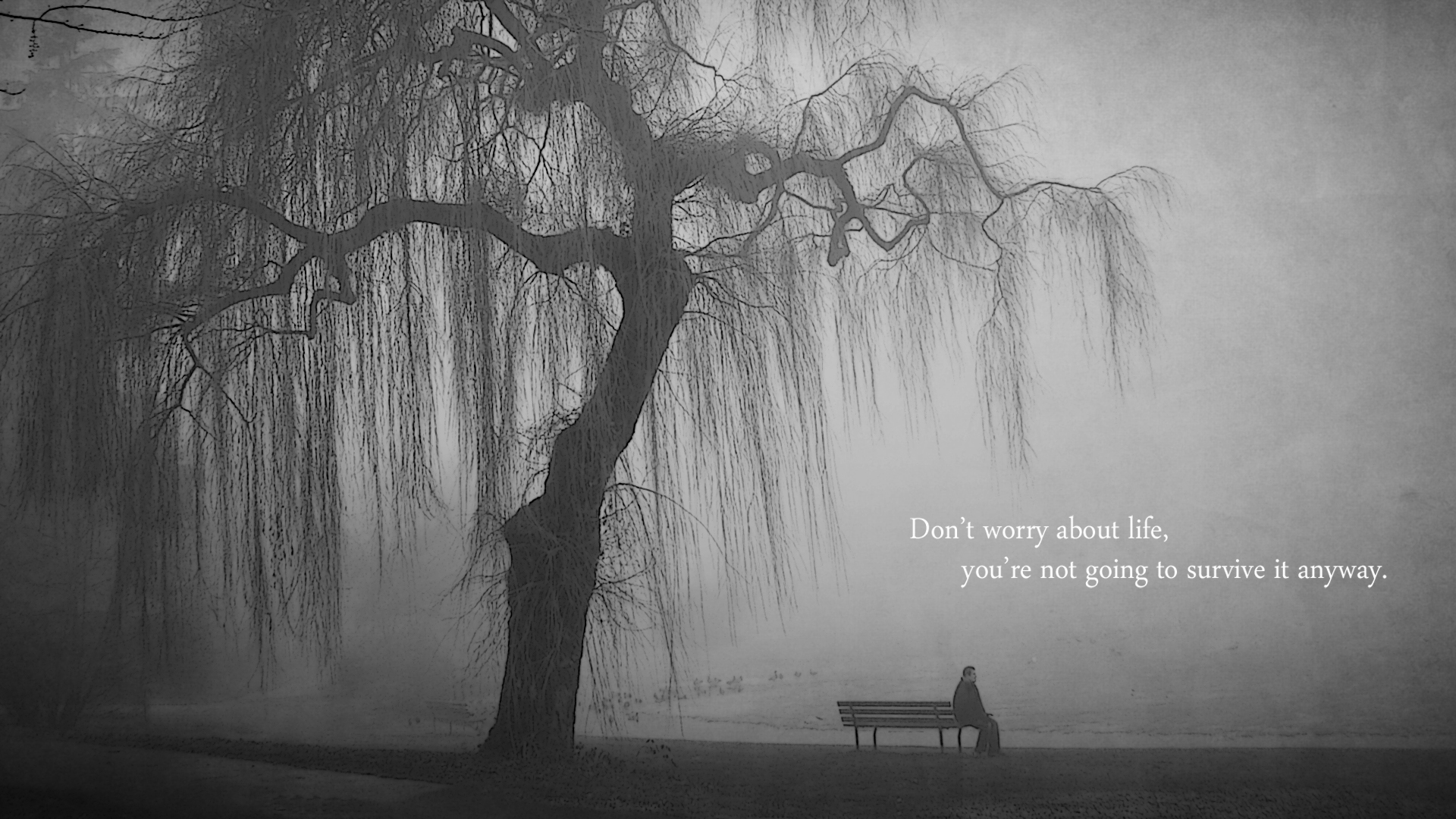 Quotes bench lonely grayscale HD Wallpaper
