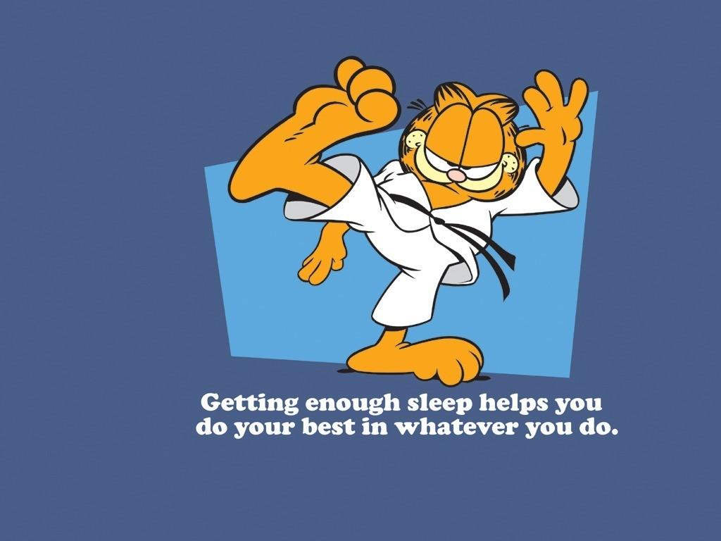 Quotes Garfield Martial Arts