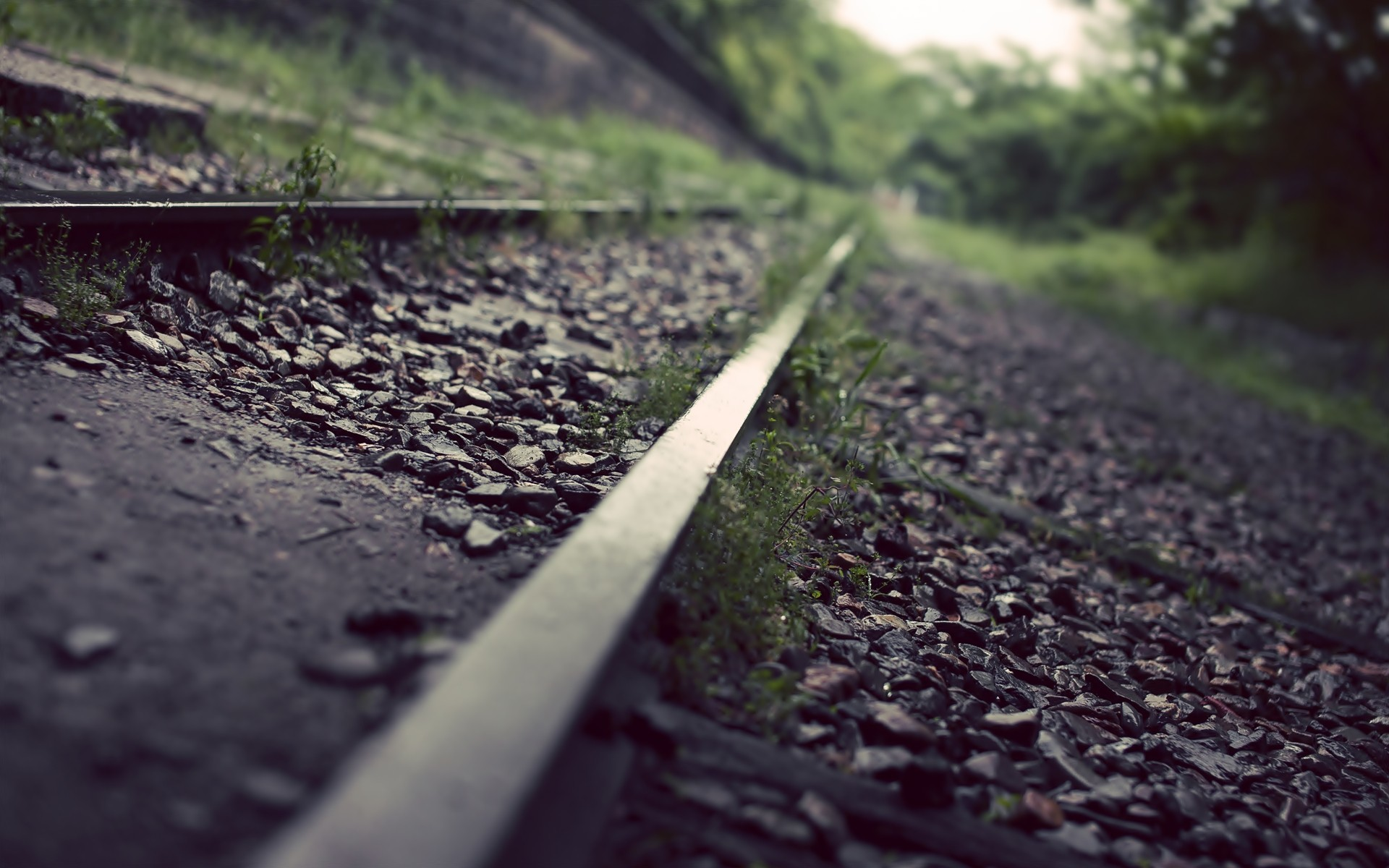 railroad tracks macro depth HD Wallpaper
