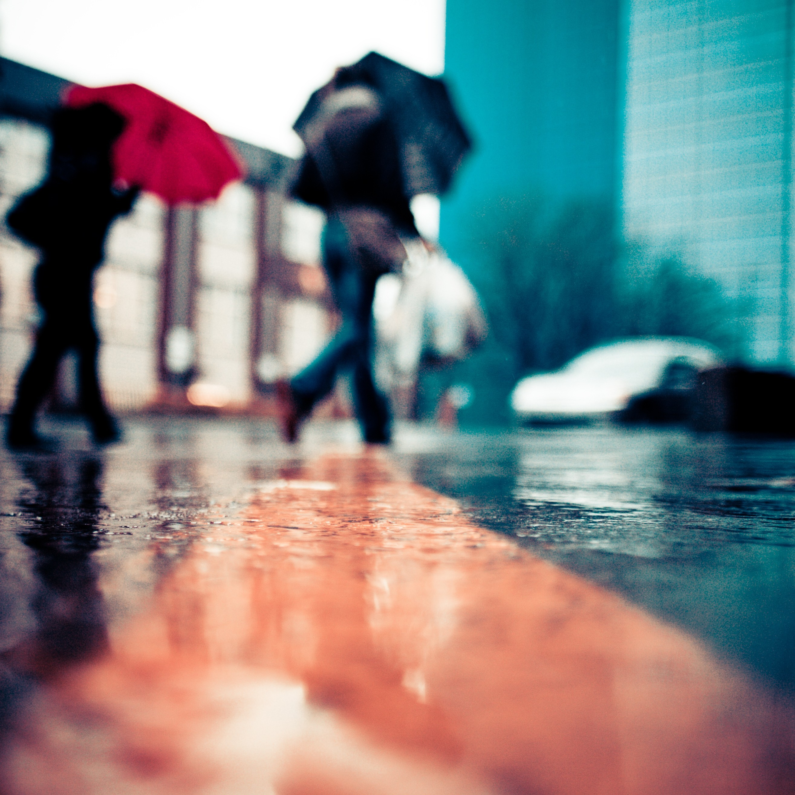 rain depth of field HD Wallpaper