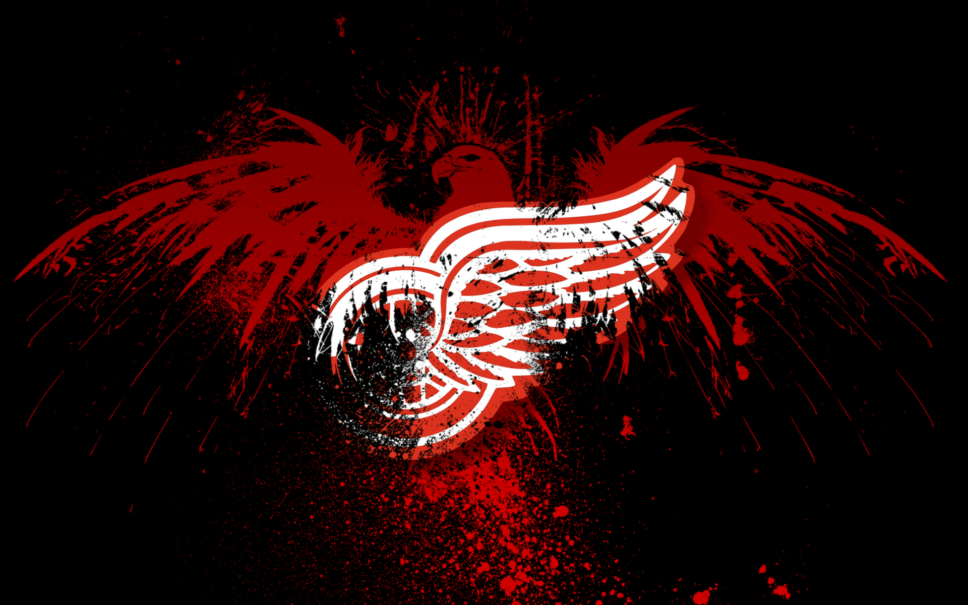 red wings RW bird HD Wallpaper