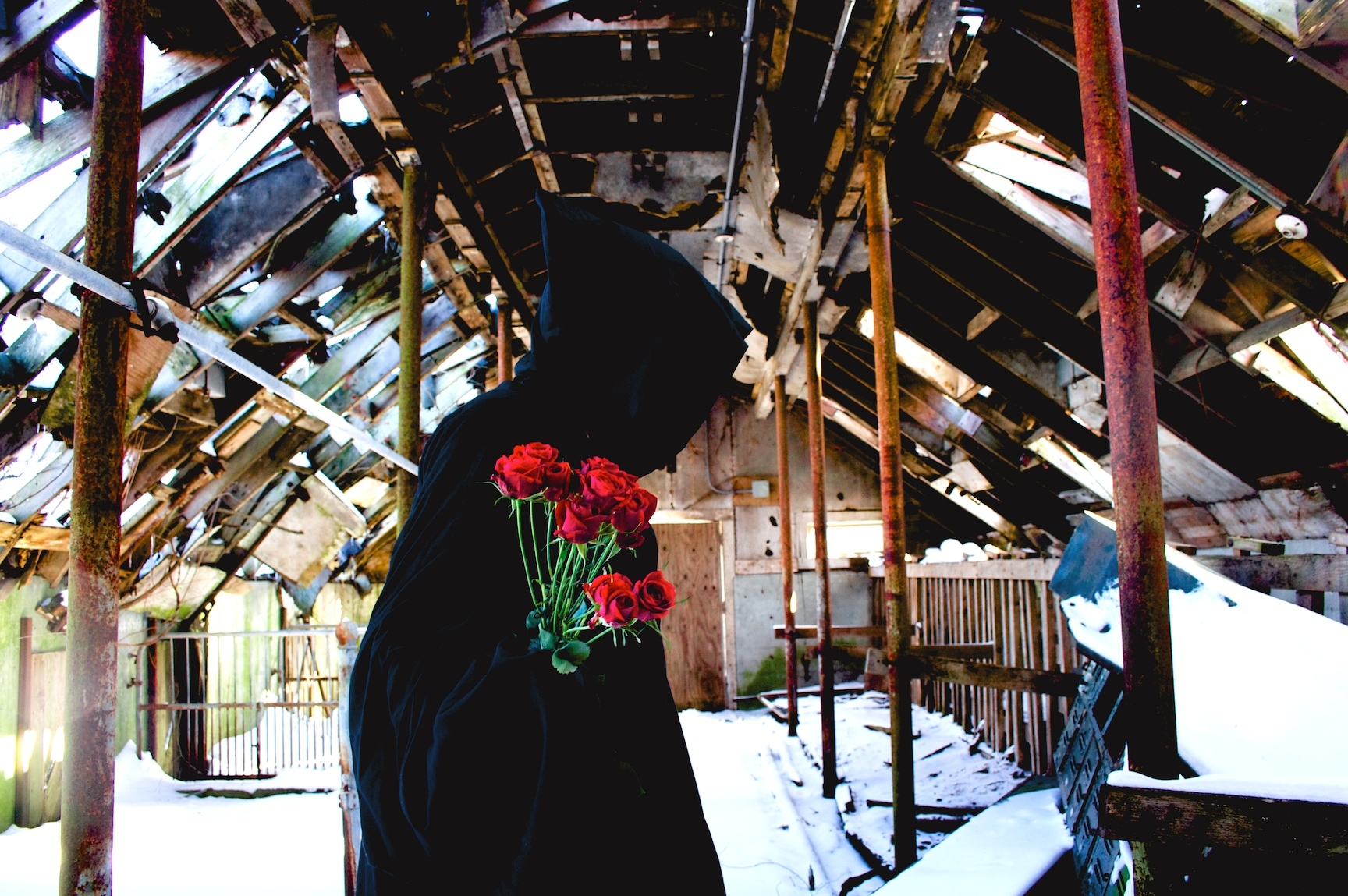ruins roses hooded photography HD Wallpaper