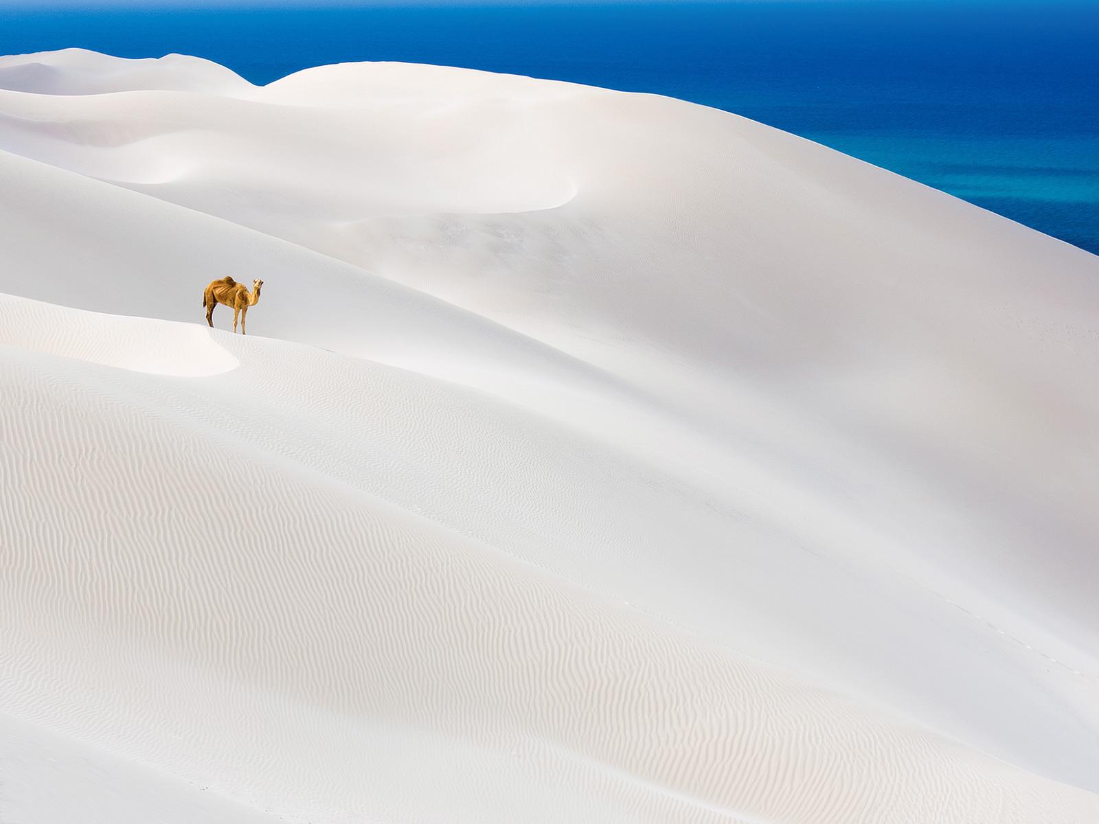 "\""sand"