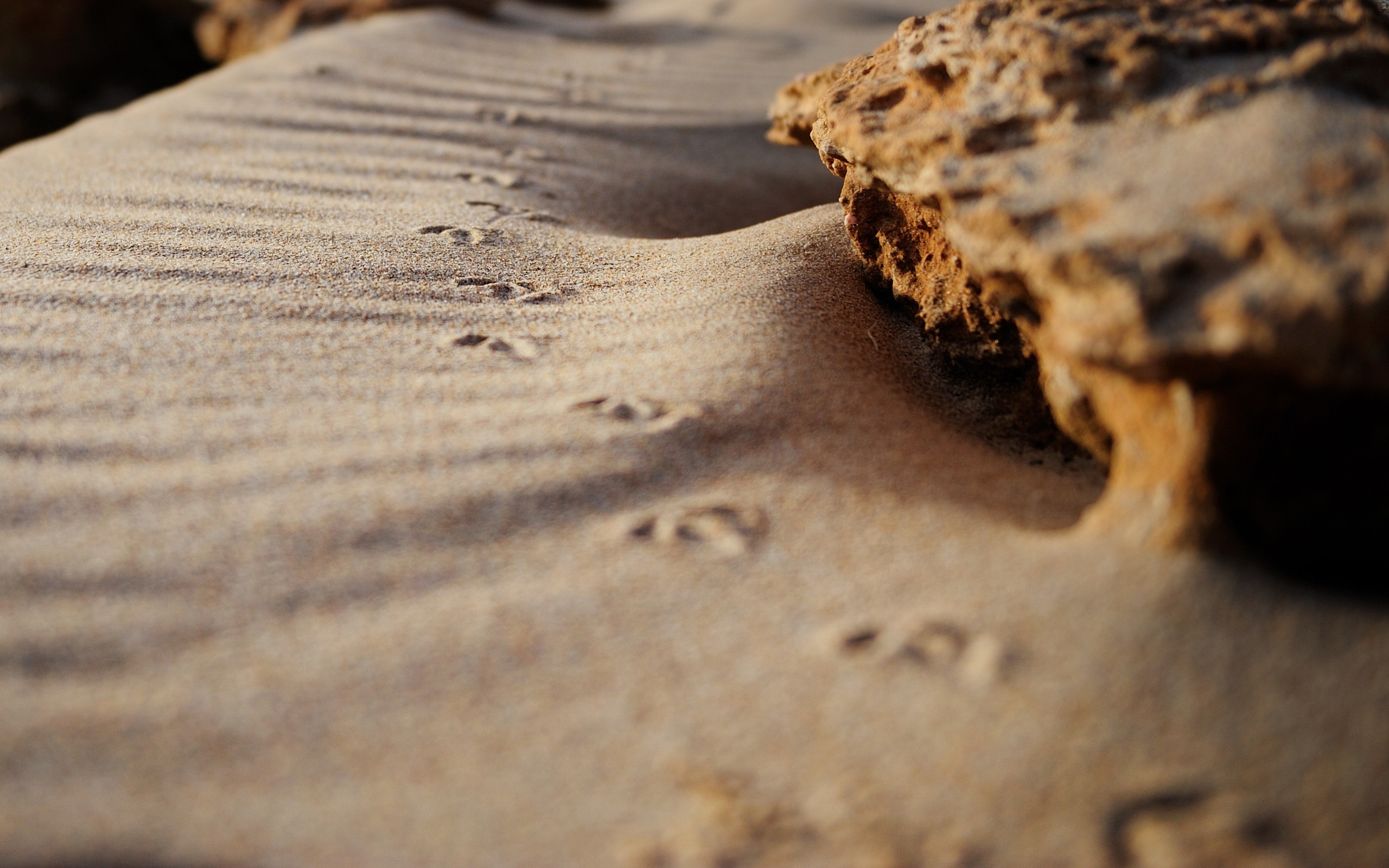 sand rocks HD Wallpaper