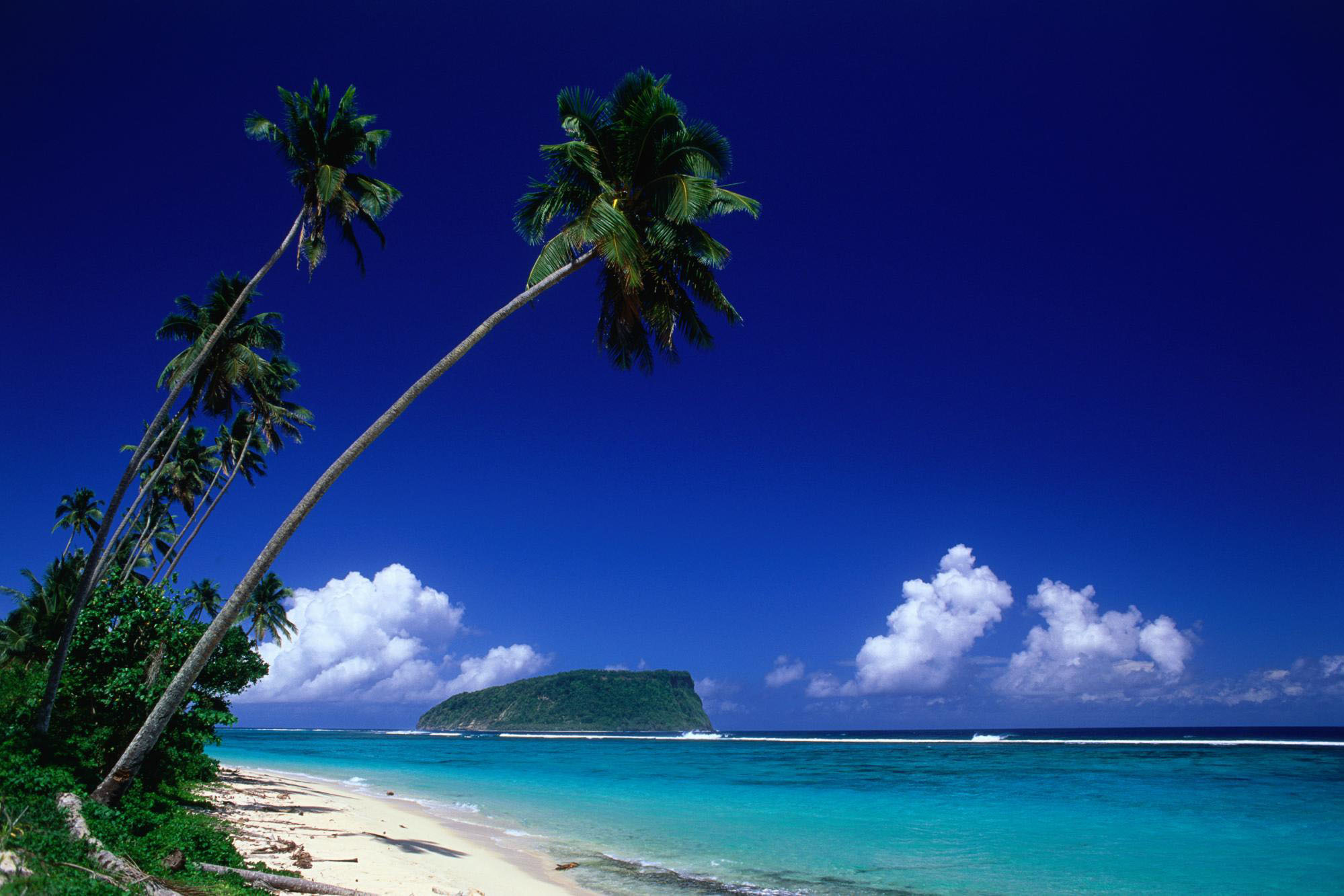 Sea tropical Islands palm