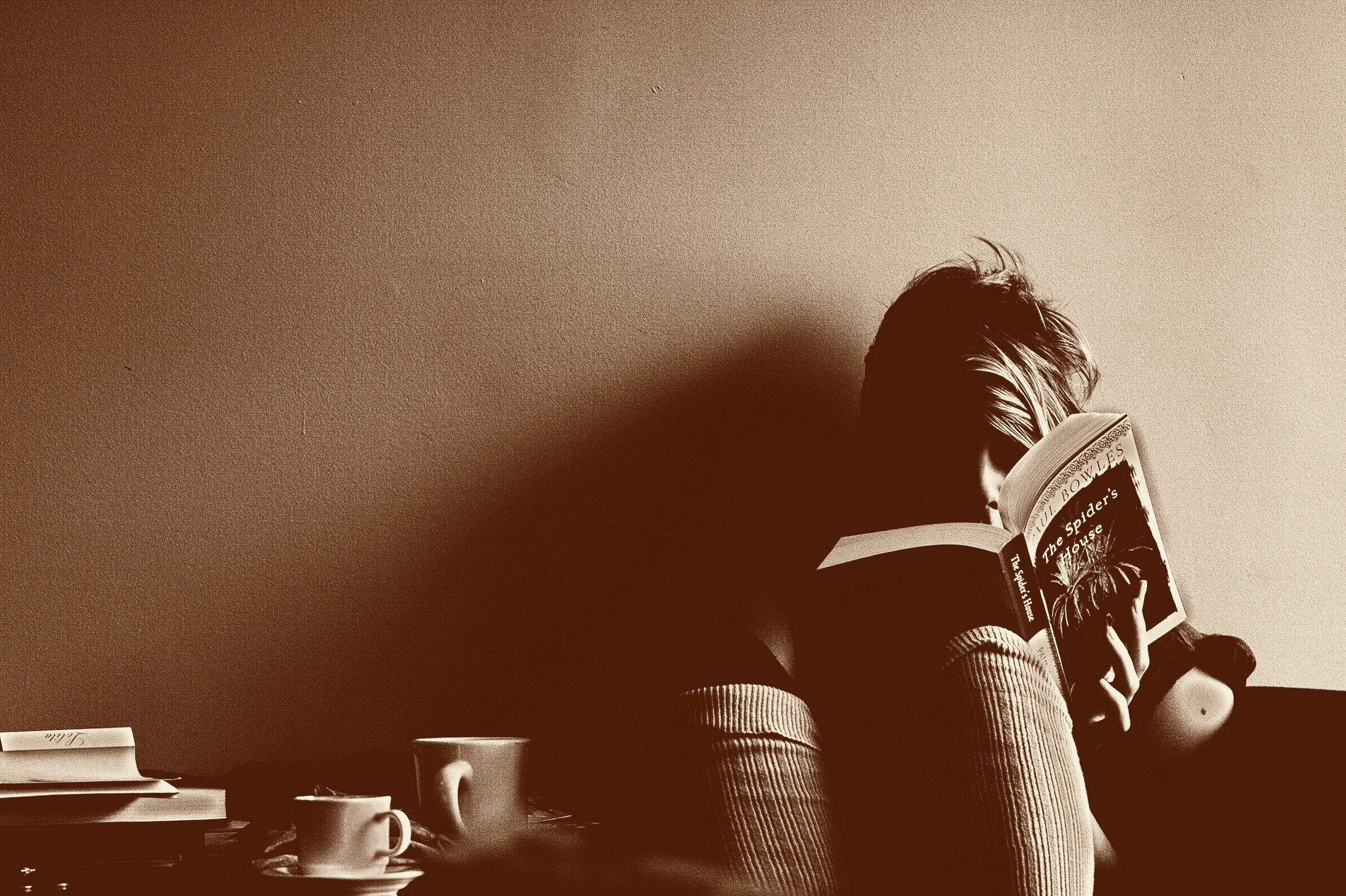 sepia reading HD Wallpaper
