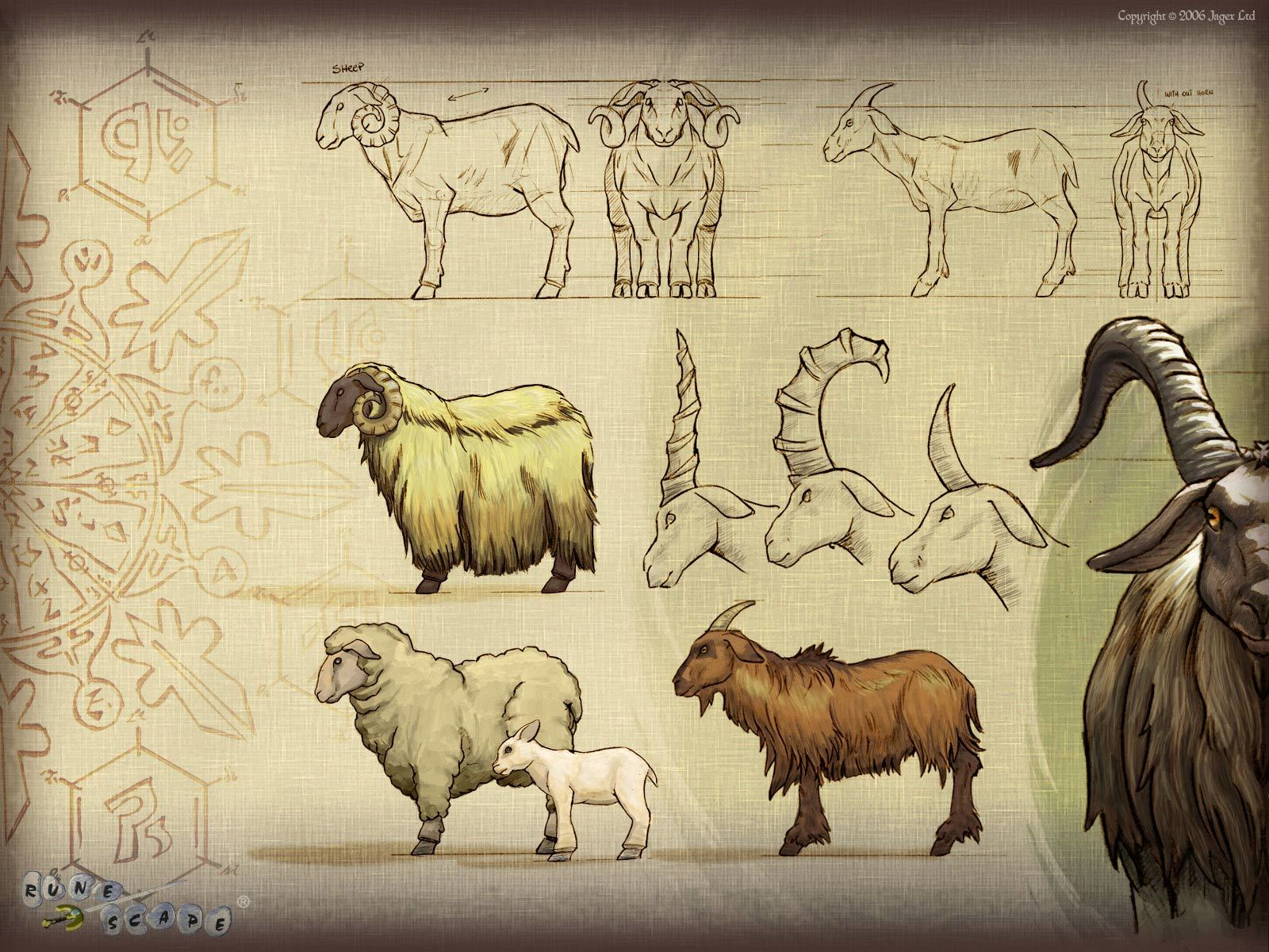 sheep runescape HD Wallpaper