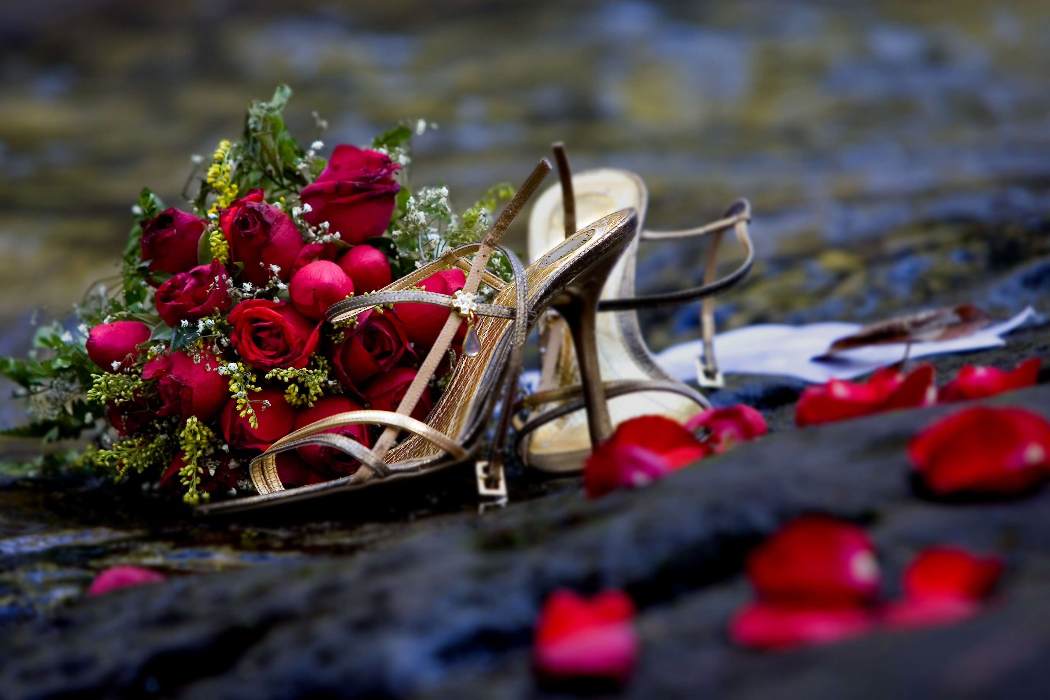 Shoes roads roses HD Wallpaper
