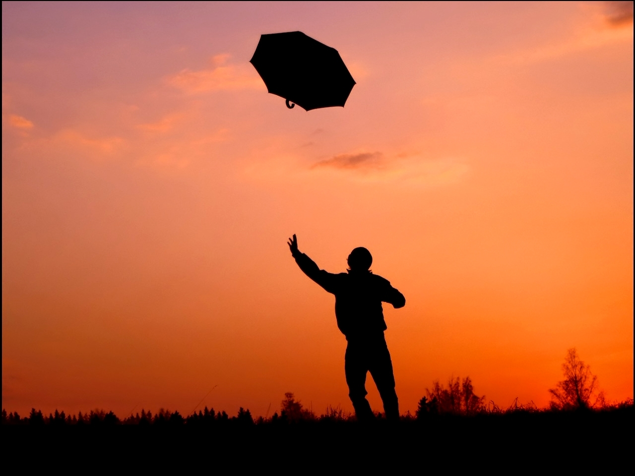 silhouette Umbrellas HD Wallpaper