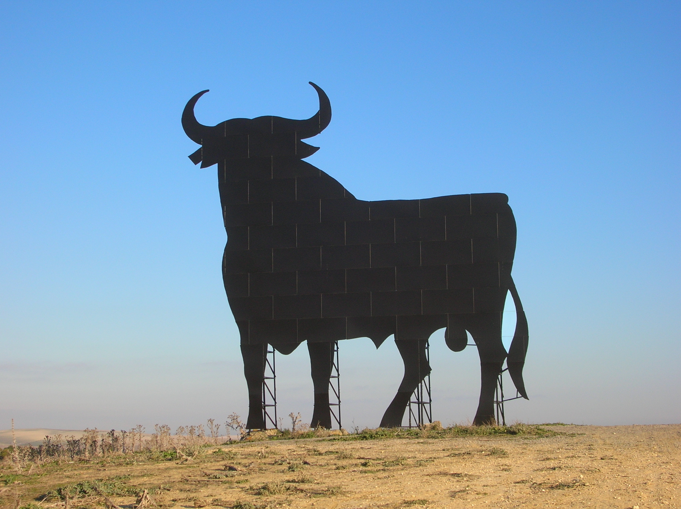 silhouettes Cows Spain Osborne HD Wallpaper