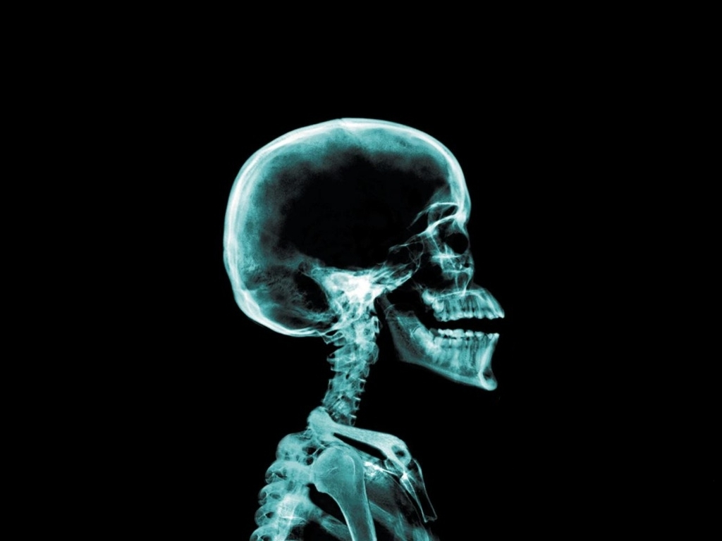 skeleton top The body HD Wallpaper