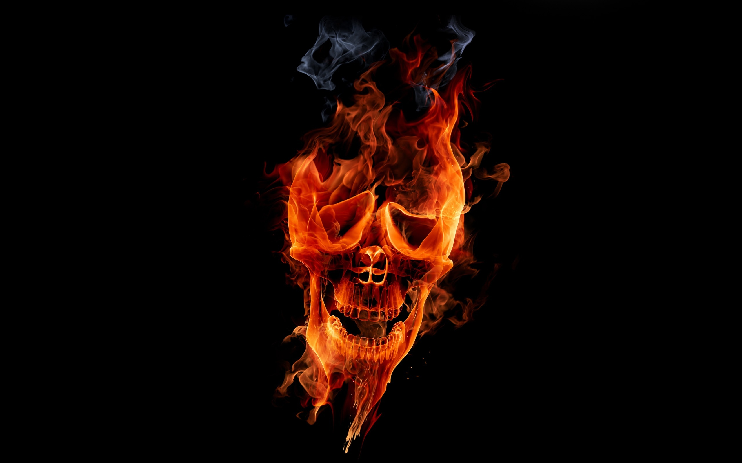 12 flaming skull hd wallpaper color palette tags 12 flaming skull