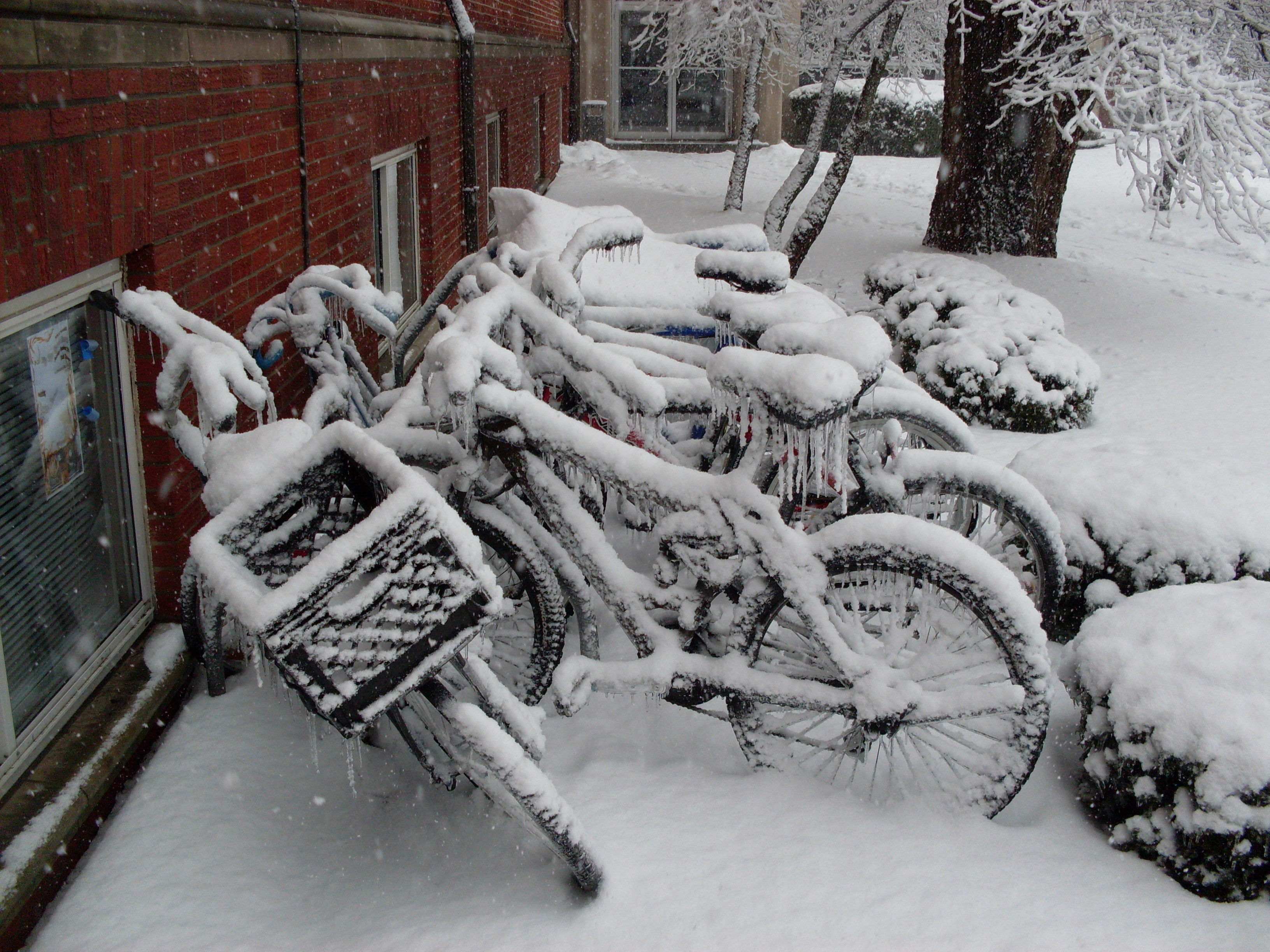 snow Bicycles brick HD Wallpaper