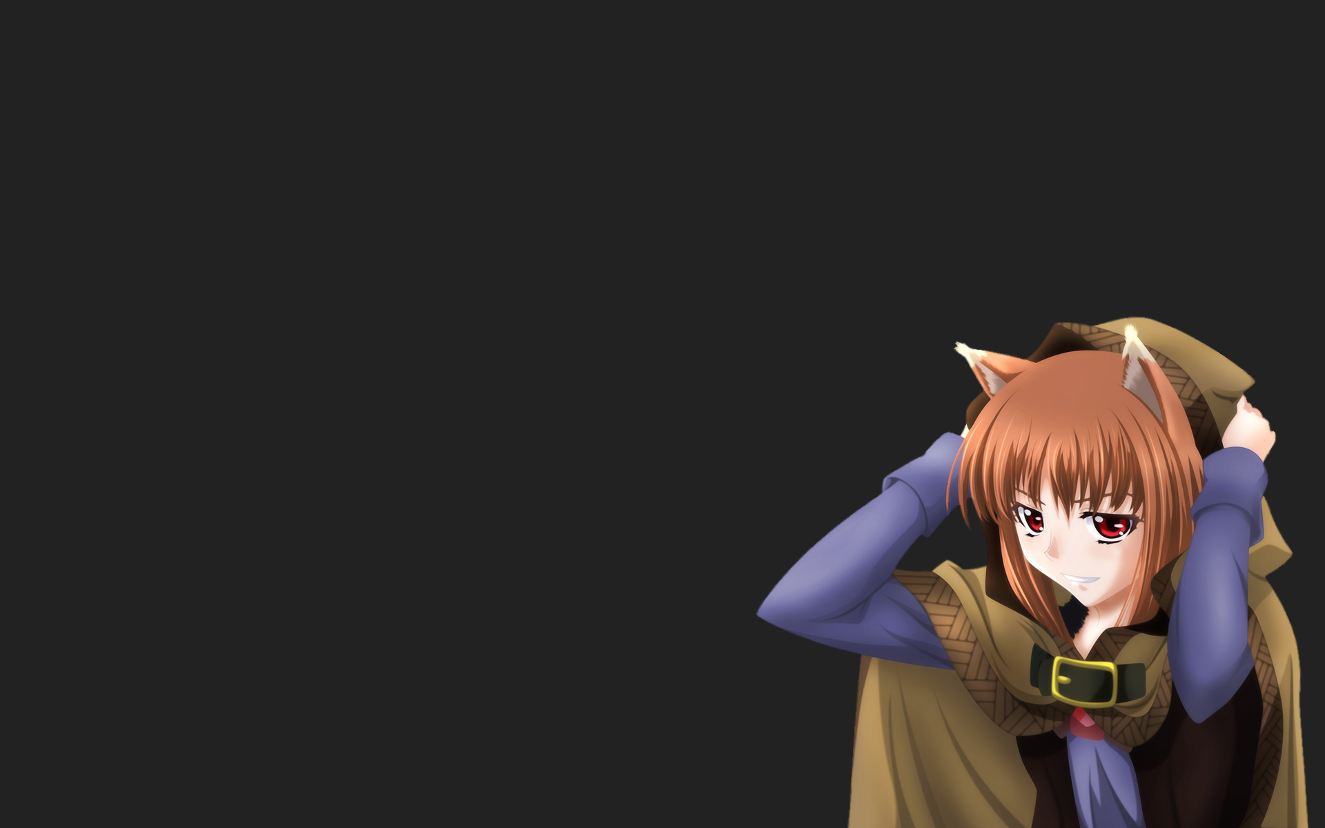 spice and wolf animal HD Wallpaper