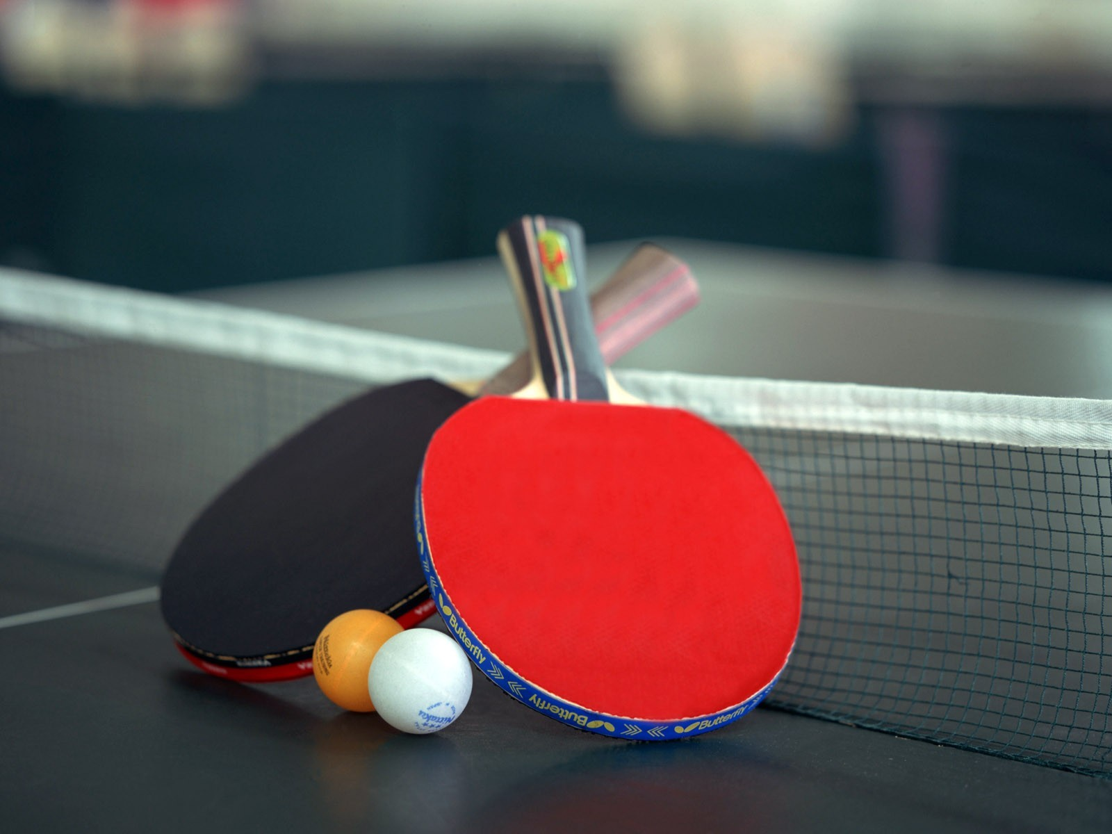 Sports ping pong table HD Wallpaper