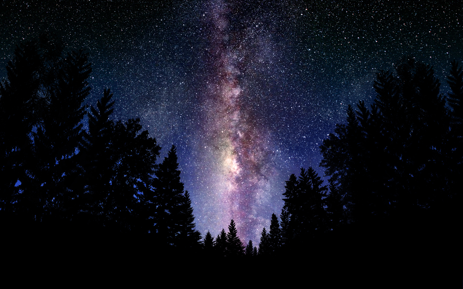 Stars forest Space HD Wallpaper