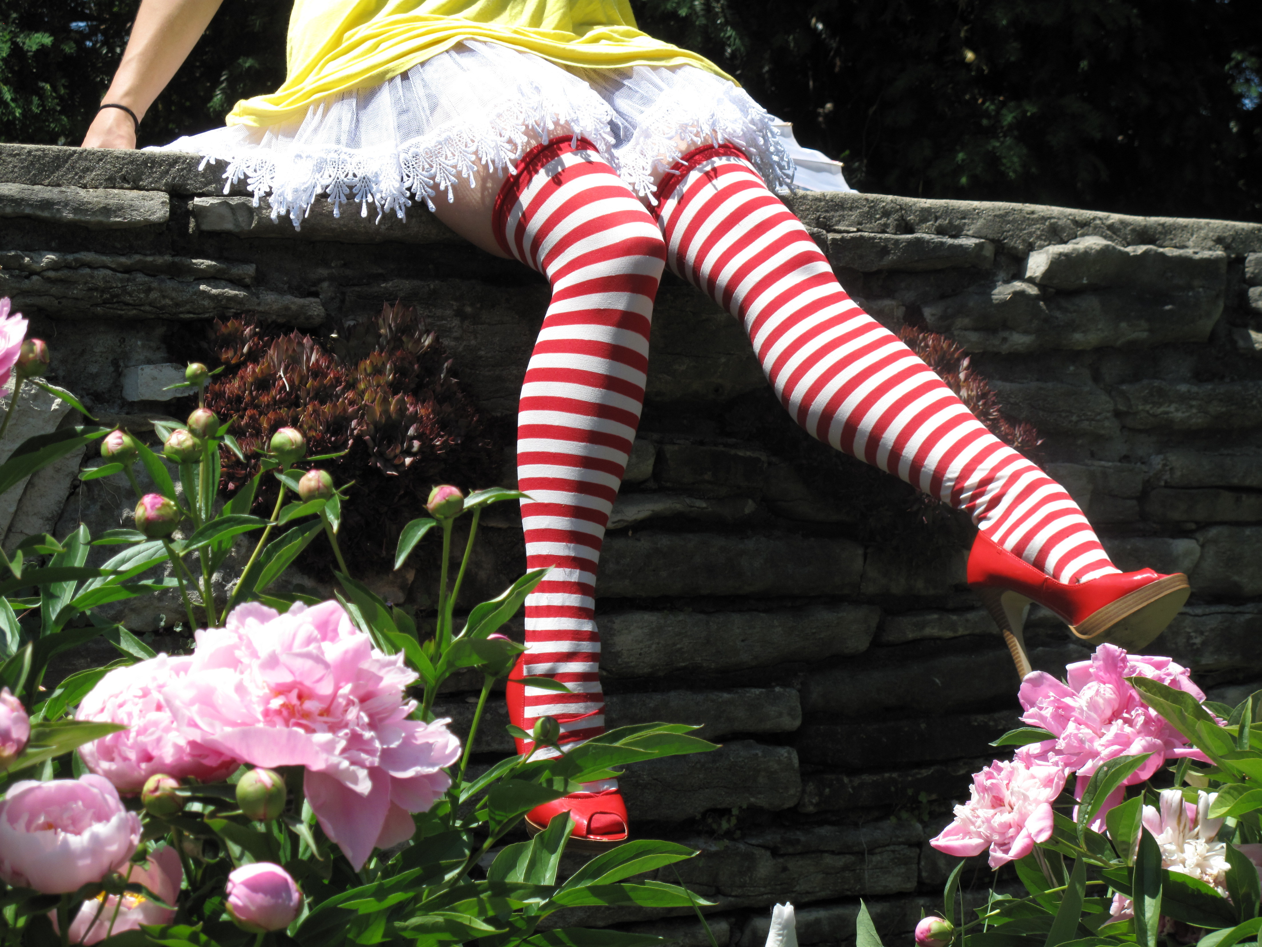 stockings ronald mcdonald striped