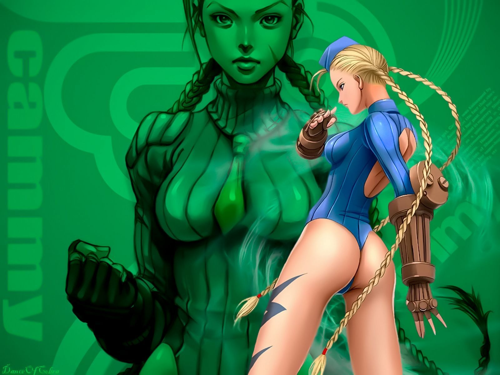 street fighter cammy HD Wallpaper
