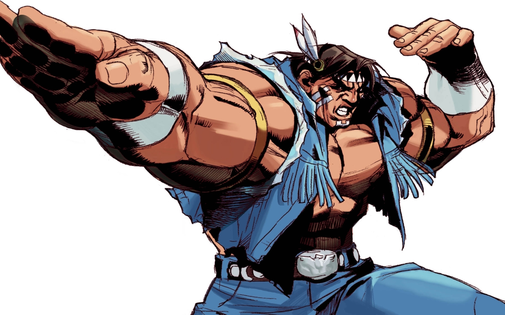street fighter hawk HD Wallpaper