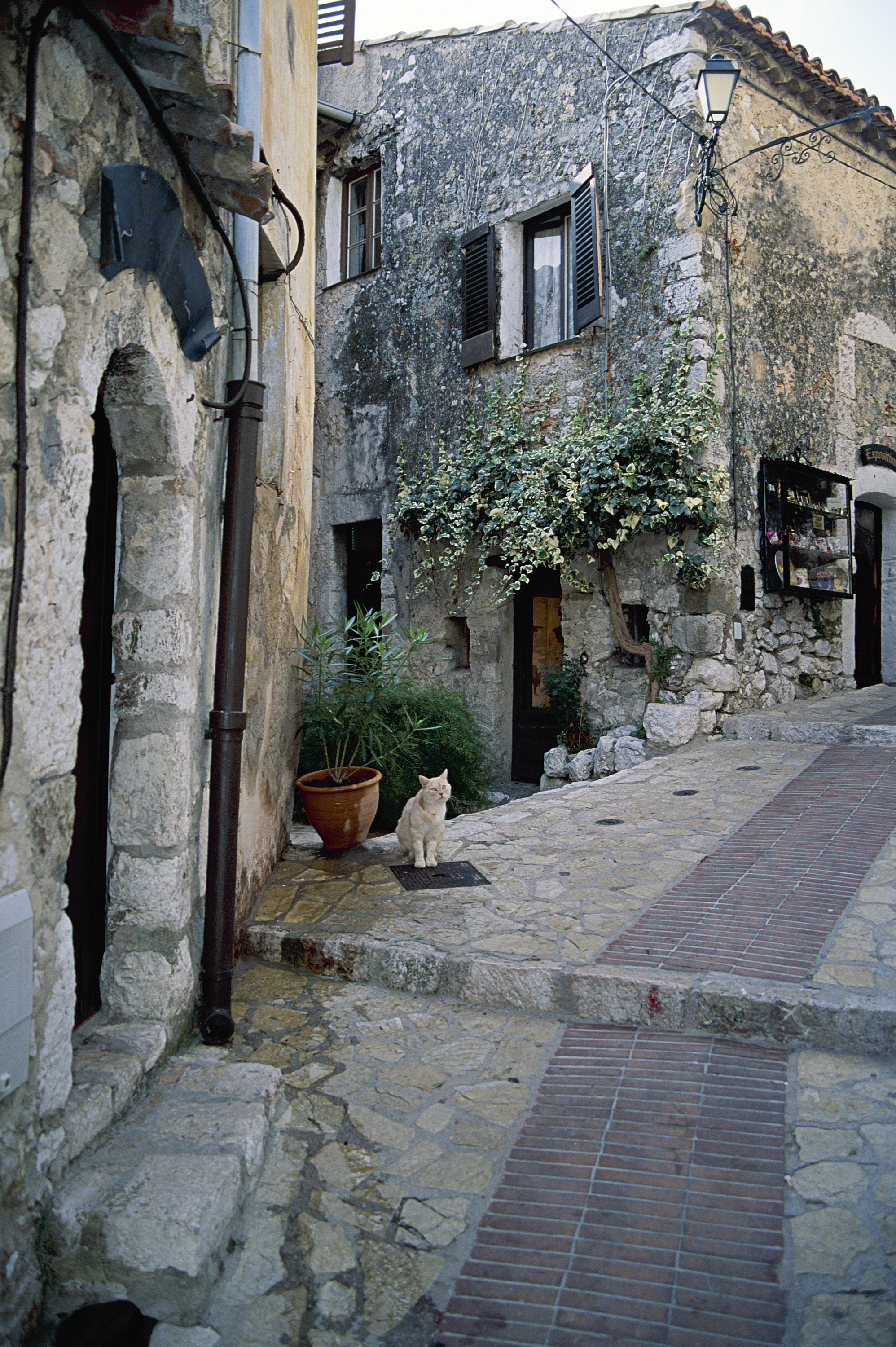 street in eze France HD Wallpaper