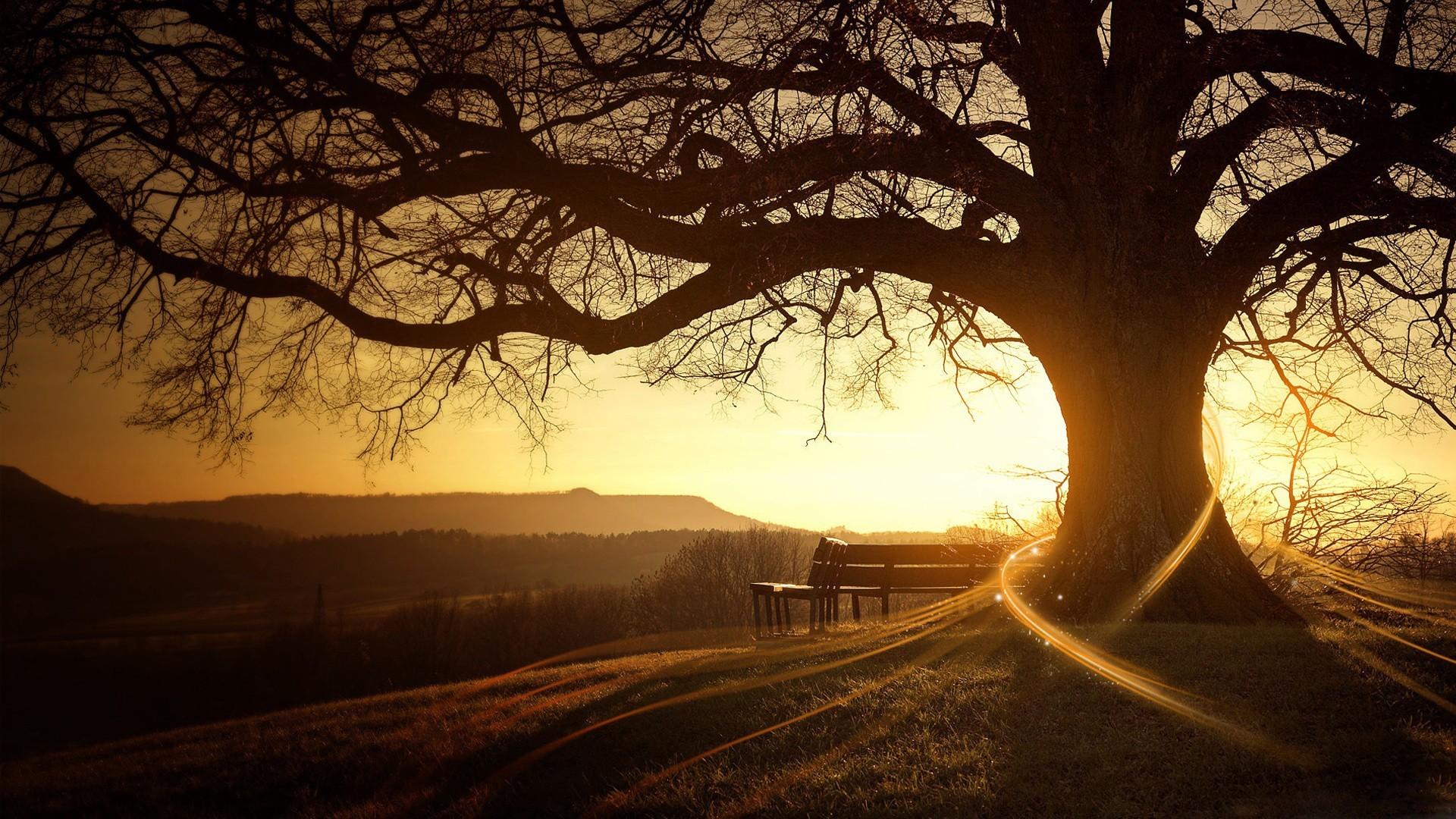 "\""sunset"
