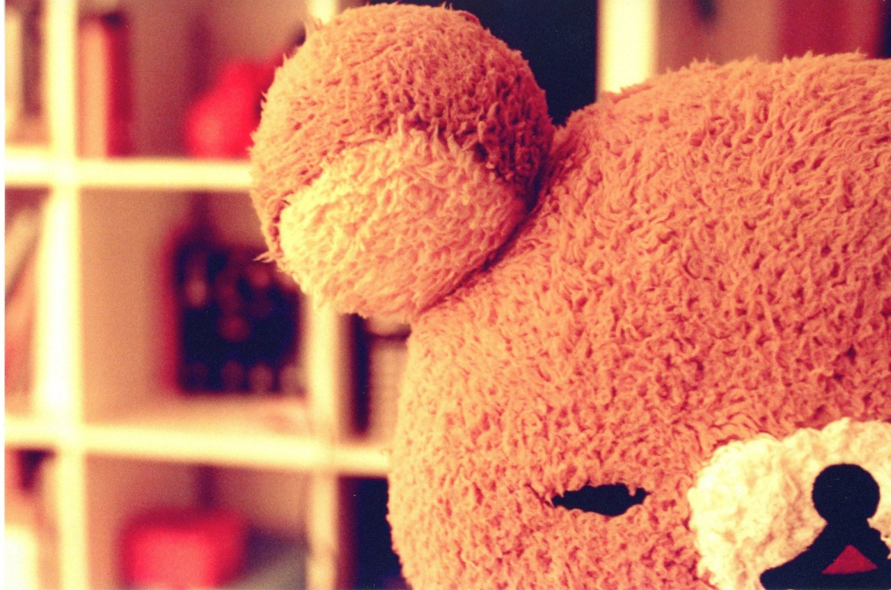 teddy bears HD Wallpaper