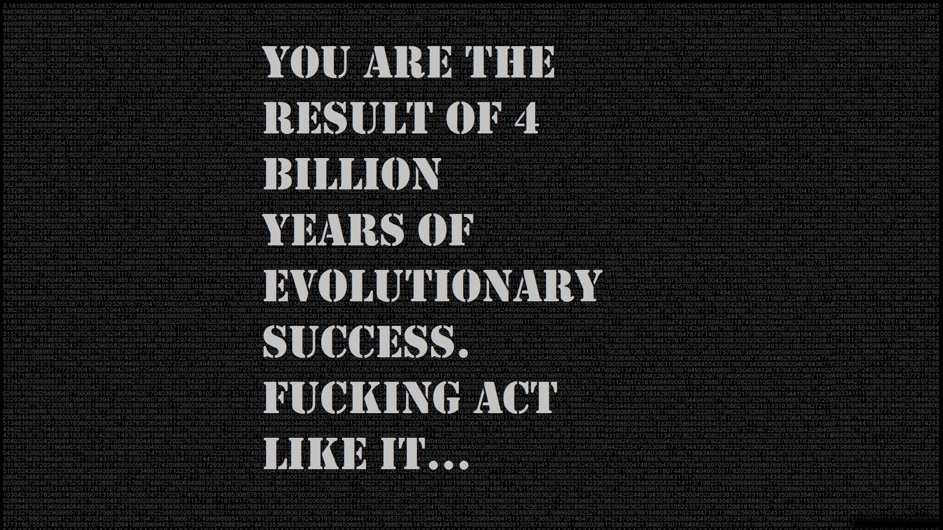 text Evolution motivation