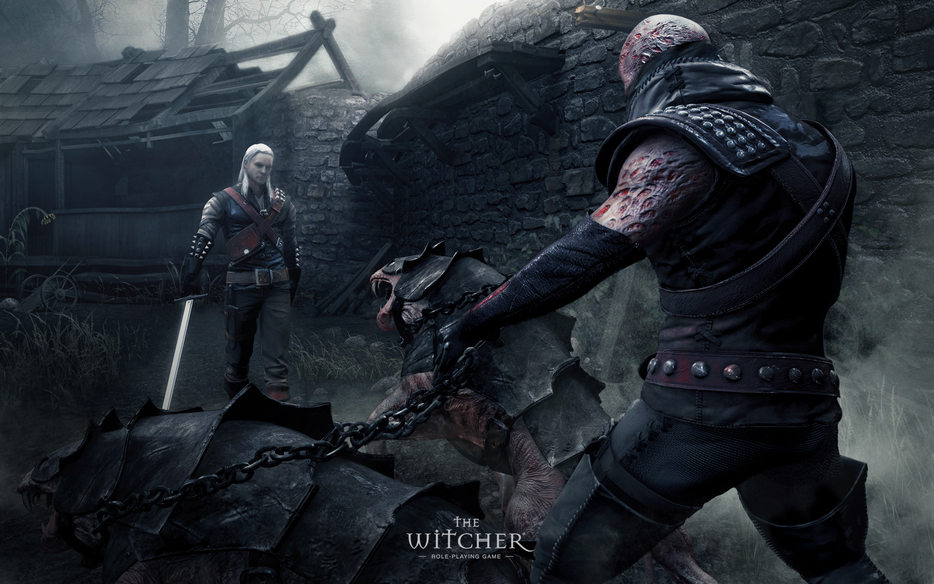 The witcher Games widescreen HD Wallpaper