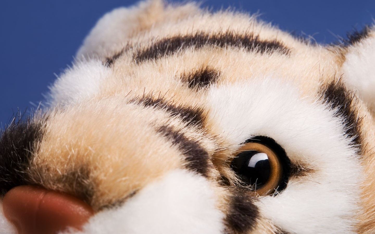 Tigers toys (children) stuffed HD Wallpaper