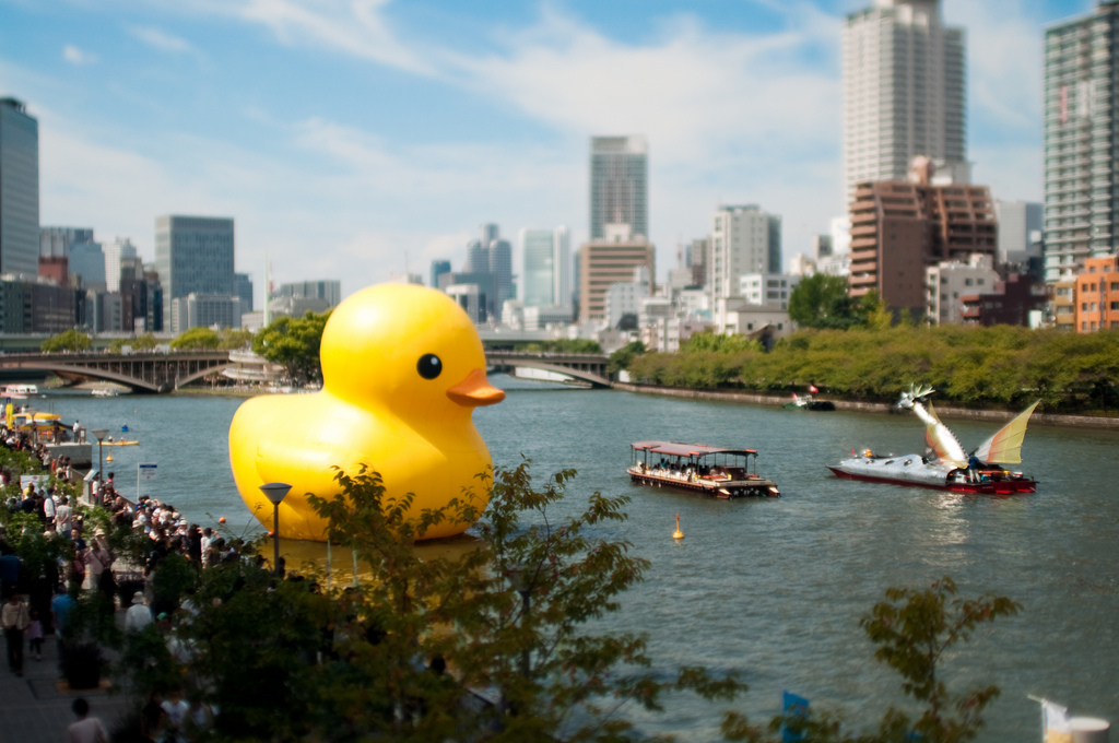 tilt-shift rubber ducks cityscapes HD Wallpaper