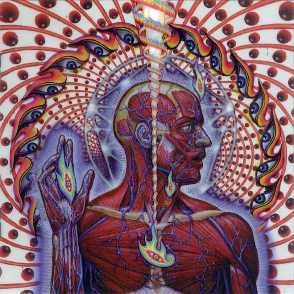 tool Alex Grey Lateralus