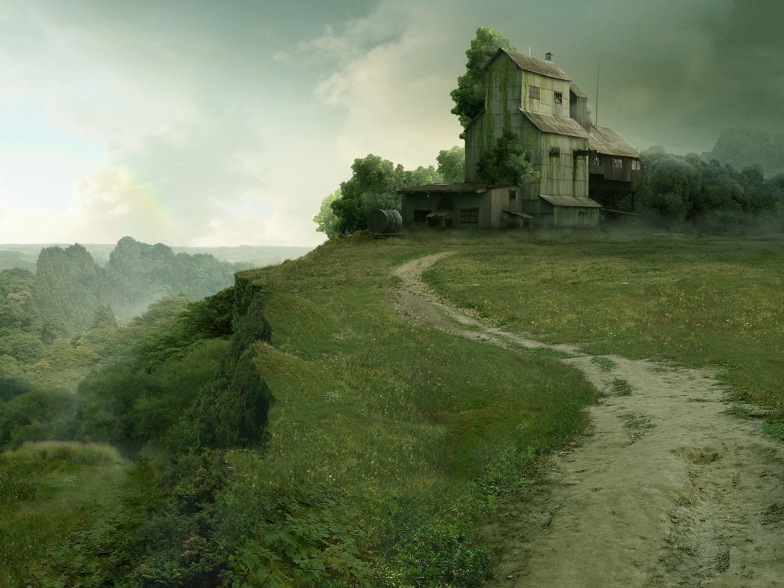 trail abandoned plateau Overgrowth HD Wallpaper