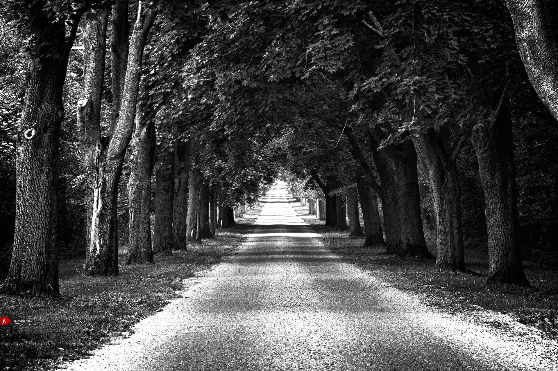 Trees distance roads arch HD Wallpaper