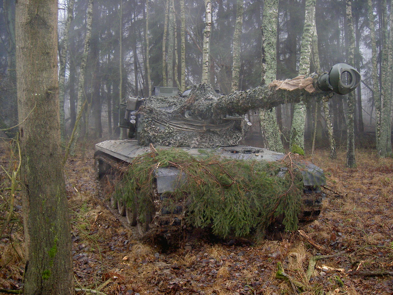 Trees forests tanks armor HD Wallpaper