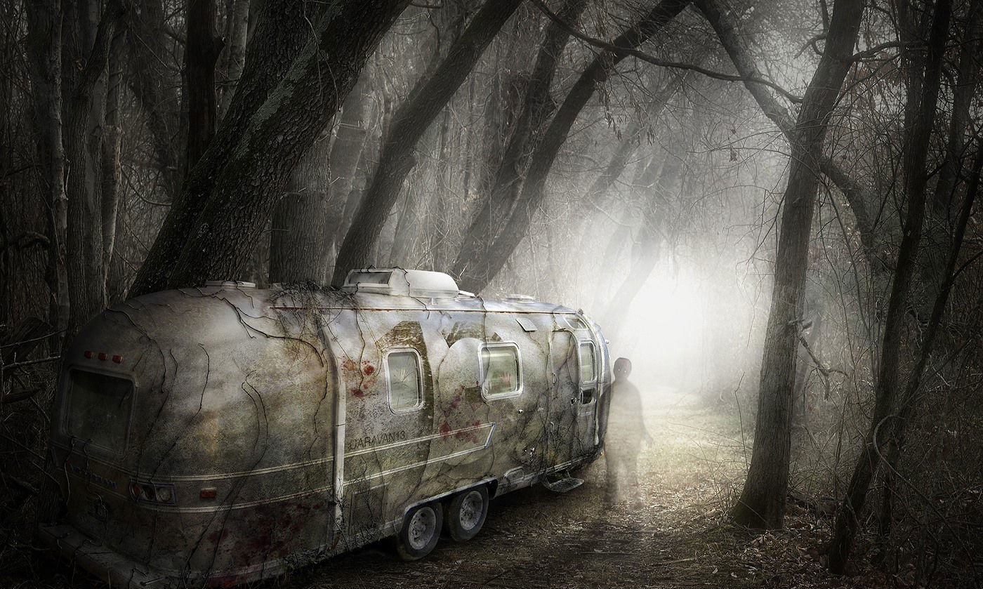 Trees post-apocalyptic forests ghosts HD Wallpaper