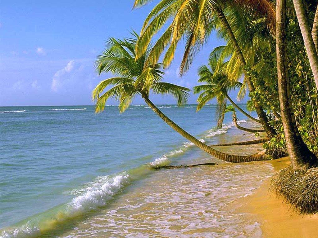 Beach Wallpaper on Tropical Beach High Resolution Hd Wallpaper   Nature   Landscapes